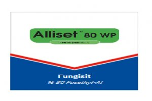 Alliset 80 WP- Fungusit