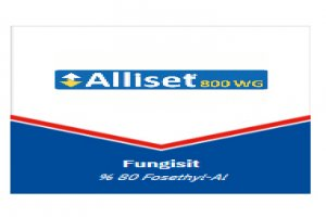 Alliset 800 WG- Fungusit