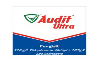 Audit Ultra - Fungusit