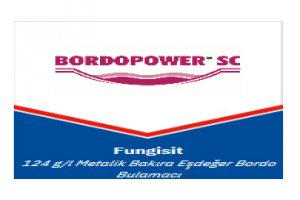 BordroPower SC - Fungusit